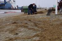 Puinruimen na hoogwater op Lauwersoog